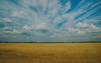 Saskatchewan Estate Litigation Update: Choquette v Viczko, 2021 SKQB 167