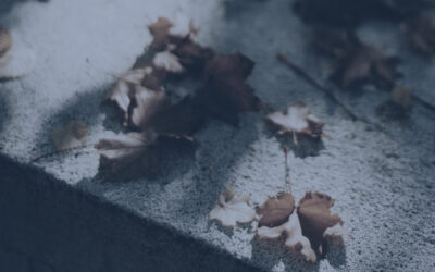 Funeral expenses: Why executors should pay them promptly